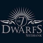The 7 Dwarfs