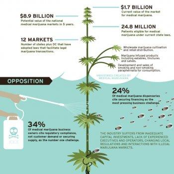marijuana-industry-infographic-620
