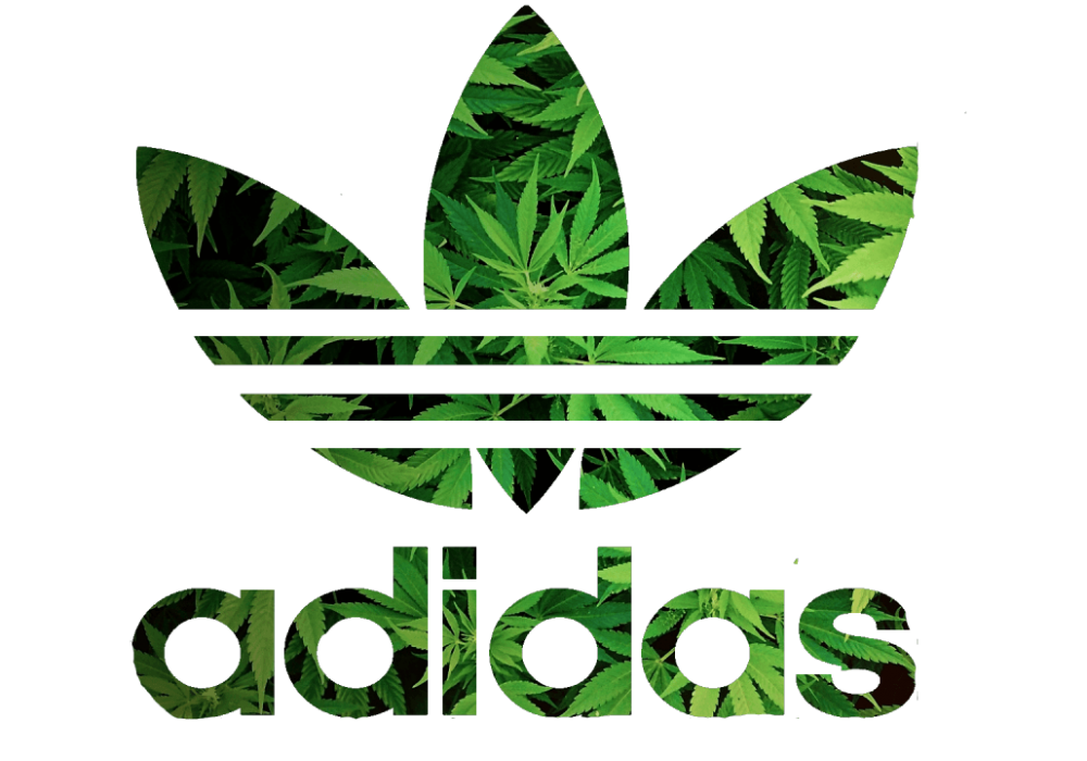 Adidas Advert Features Cannabis Farm