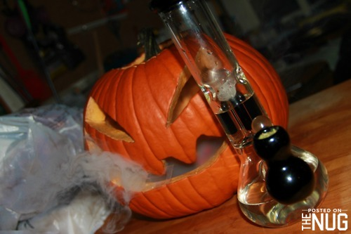 Pumpkin Bongs and Weed Jack O'lanterns for Halloween