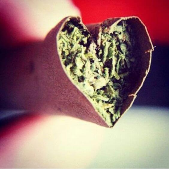 Weed Weddings – Get Hitched & High