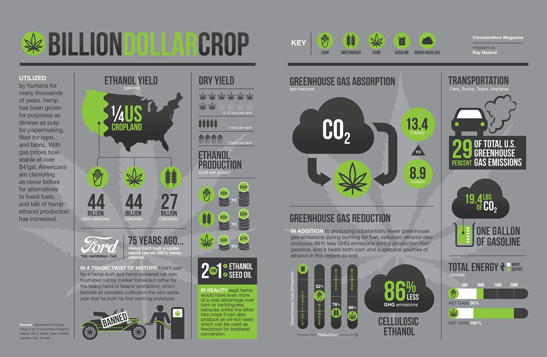 billion-dollar-crop-weed-infographic