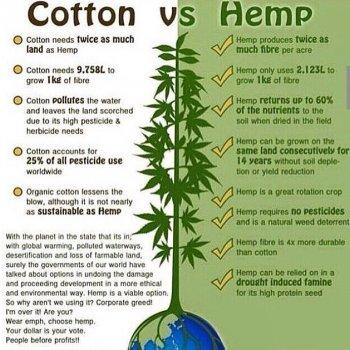 cotton_vs_hemp-infographic