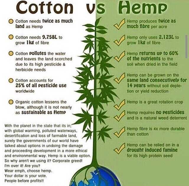 cotton_vs_hemp-infographic