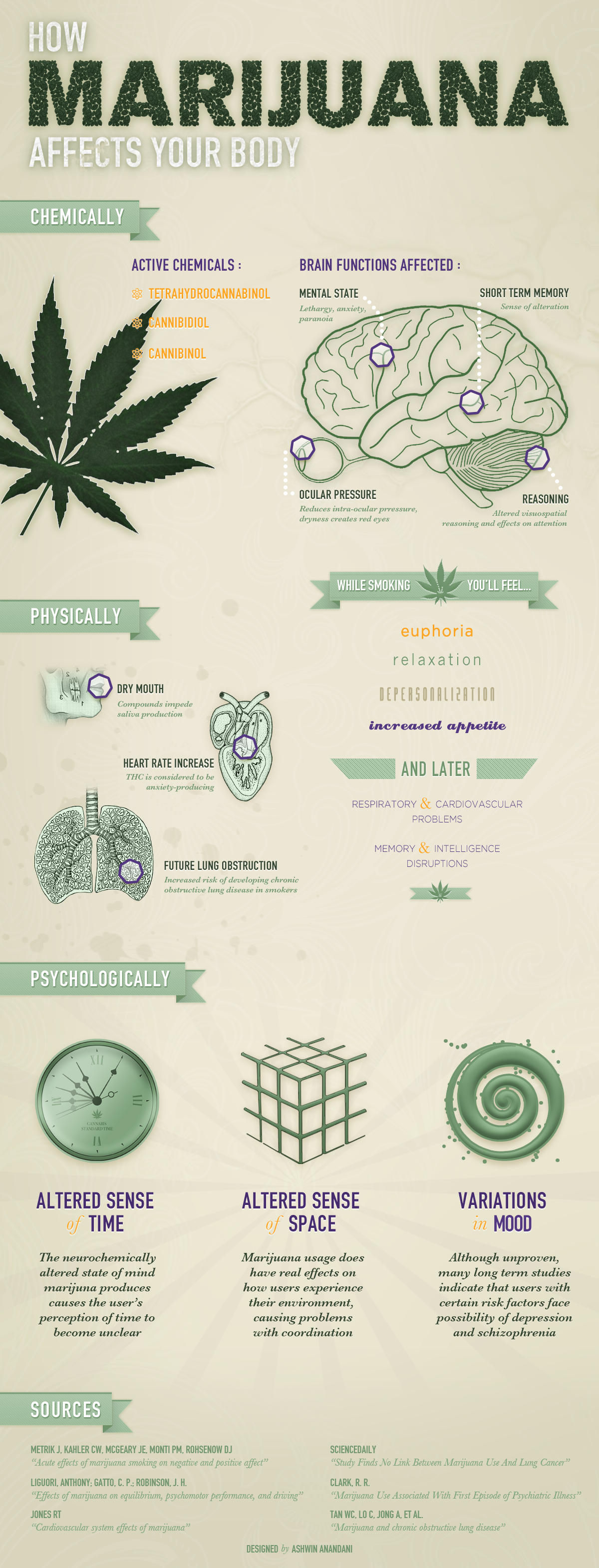 how-marijuana-effects-your-body