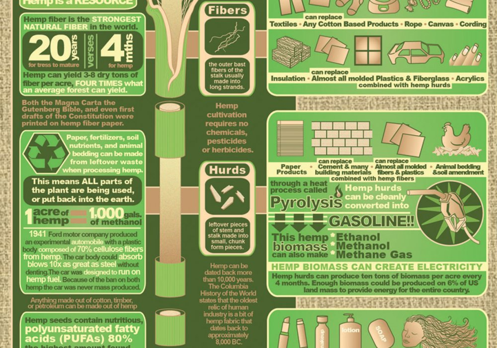 Industrial Hemp – 50,000 Different Uses