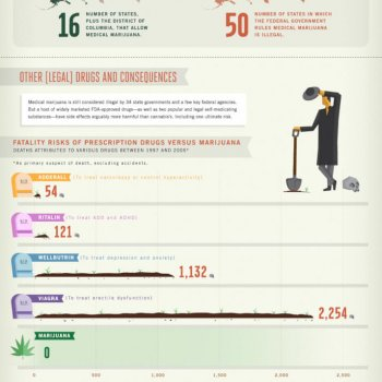 cannabis-contrasictions-wack-weed-attitudes