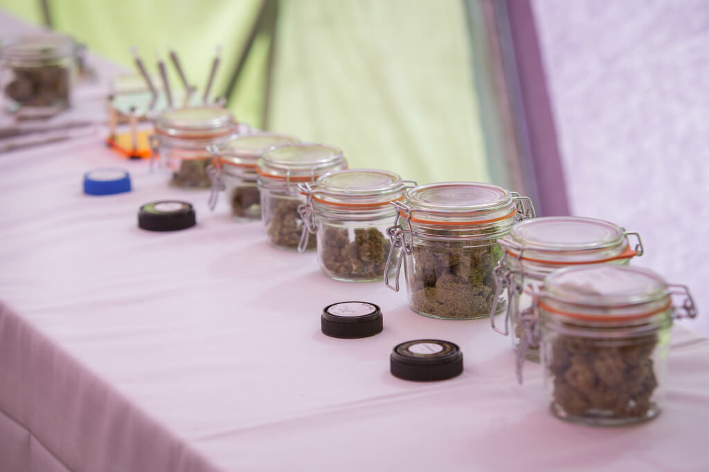 Weed Wedding Planner