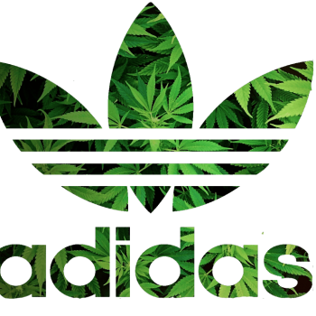 Adidas Advert / Video Featuring Cannabis Farm