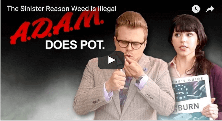 Adam Ruins Everything – Weed History Episode