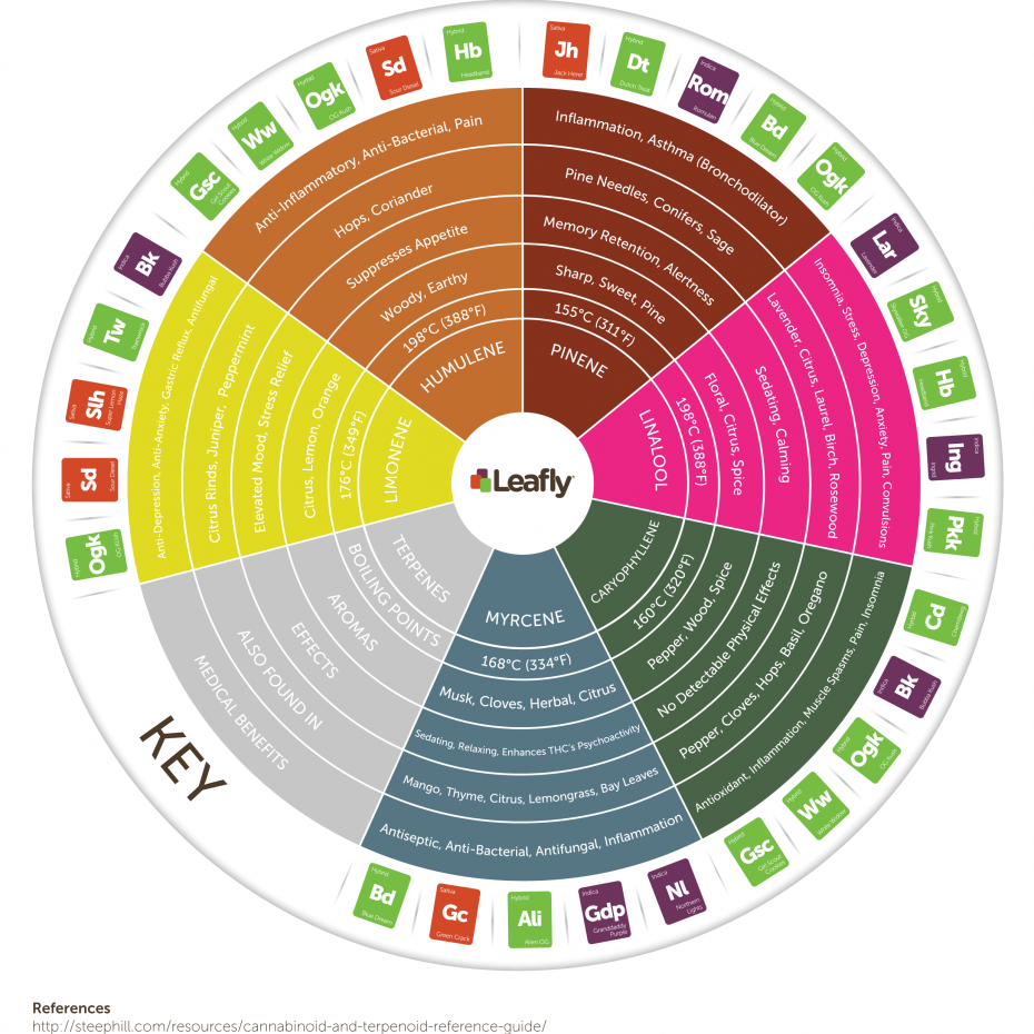 Leafly-Cannabis-Terpene-Wheel-Infographic