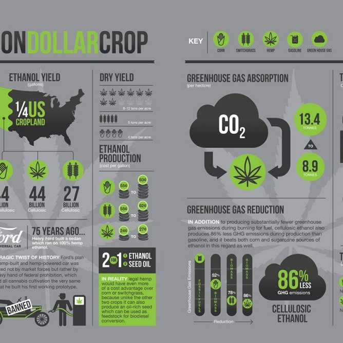 billion-dollar-crop-weed-infographic
