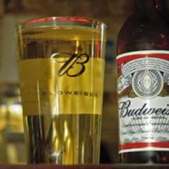 budweiser-beers-ap
