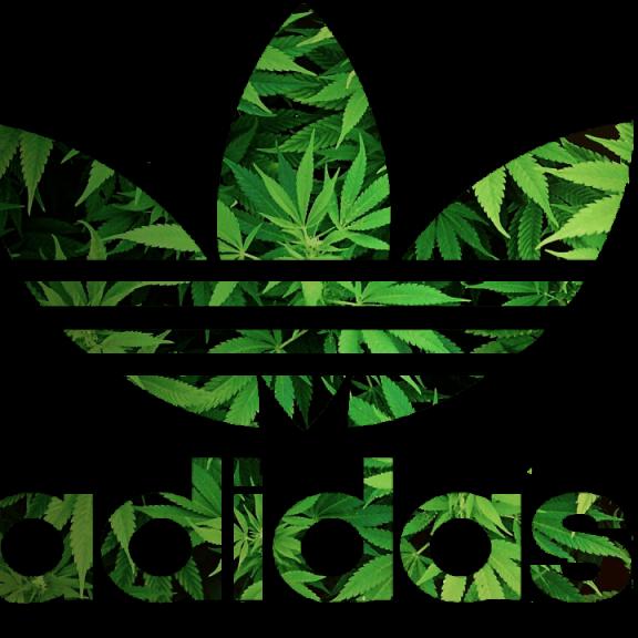 Adidas Advert / Video Featuring Cannabis Farm